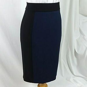 ZARA Basic colorblock pencil skirt